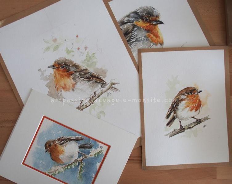 Rouge Gorge Aquarelle Aquarelle Art D Oiseau Et Animaux