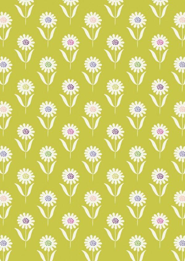 A83.2-Daisies-on-Summer-Grass