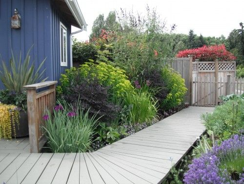Those are some gorgeous gardens and path- irises, buddliea, grasses.....