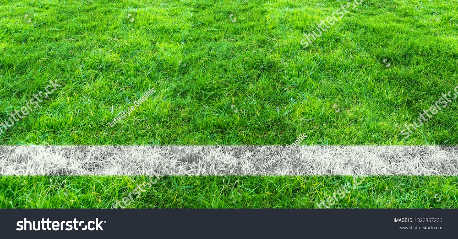 Soccer Line In Green Grass Of Soccer Field Green Lawn Field Pattern For Sport For Background Ad Affiliate Grass Soccer Gre Green Lawn Green Grass Grass