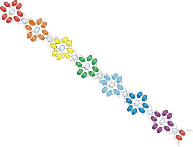 Free Beading Pattern Simple Flower Bracelet Bead Patterns