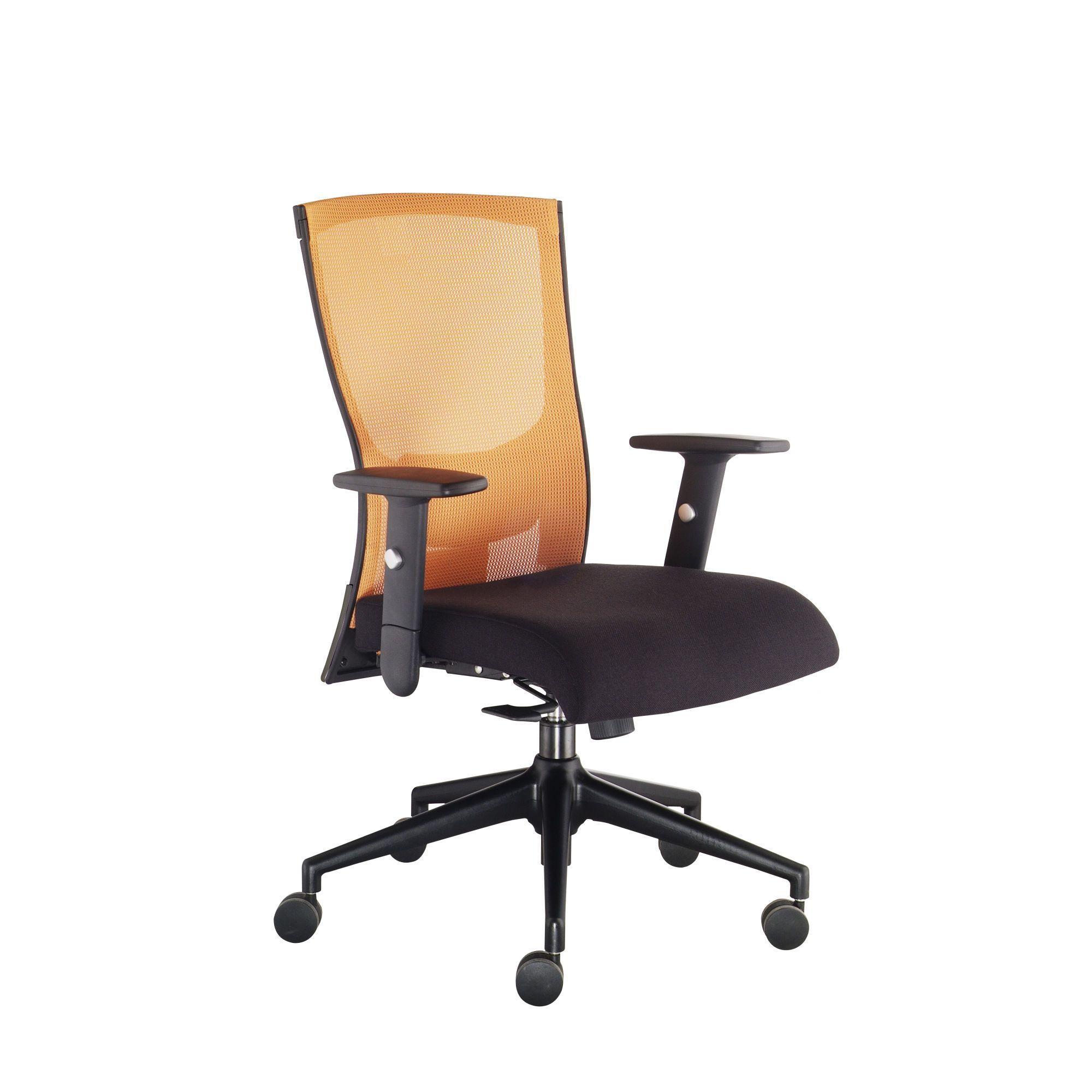 The Ergo Office Mid Back Mesh Task Chair