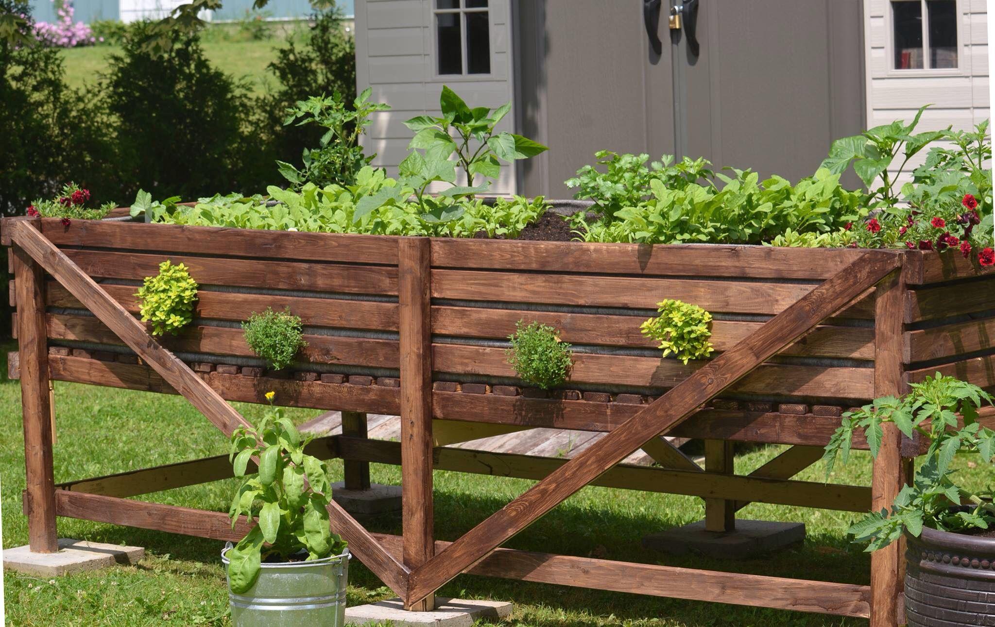 My little vegetable garden - Mon petit potager - Garden in a box ...