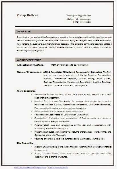 mba cv objectives example