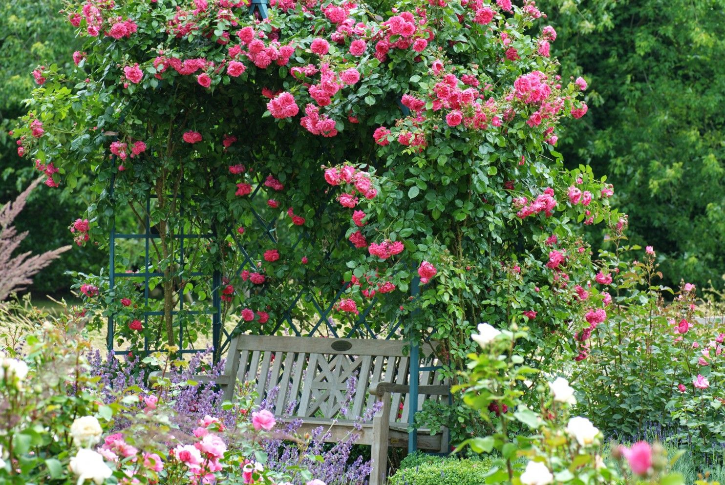 Beautiful The Gardener Landscaping Images - Landscaping Ideas for ...