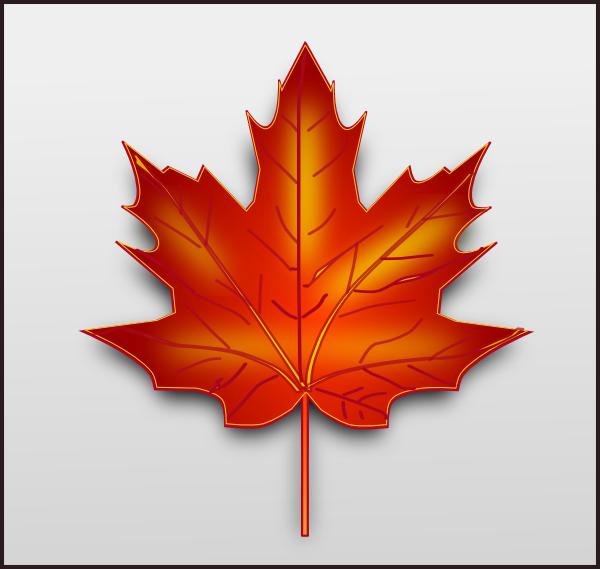 Maple Leaf Template Free Printable Maple Leaf Template Leaf Coloring Page Leaves Template Free Printable