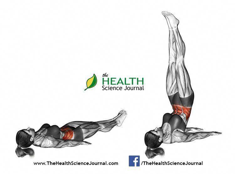 © Sasham | Dreamstime.com – Ab workouts for women. Bottoms Up. Female