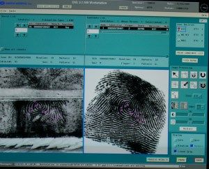 Afis The Automated Fingerprint Identification System Forensics Criminology Forensic Science