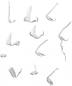 How To Draw Noses Step 4 Nose Drawing Sketch Nose Manga Nose
