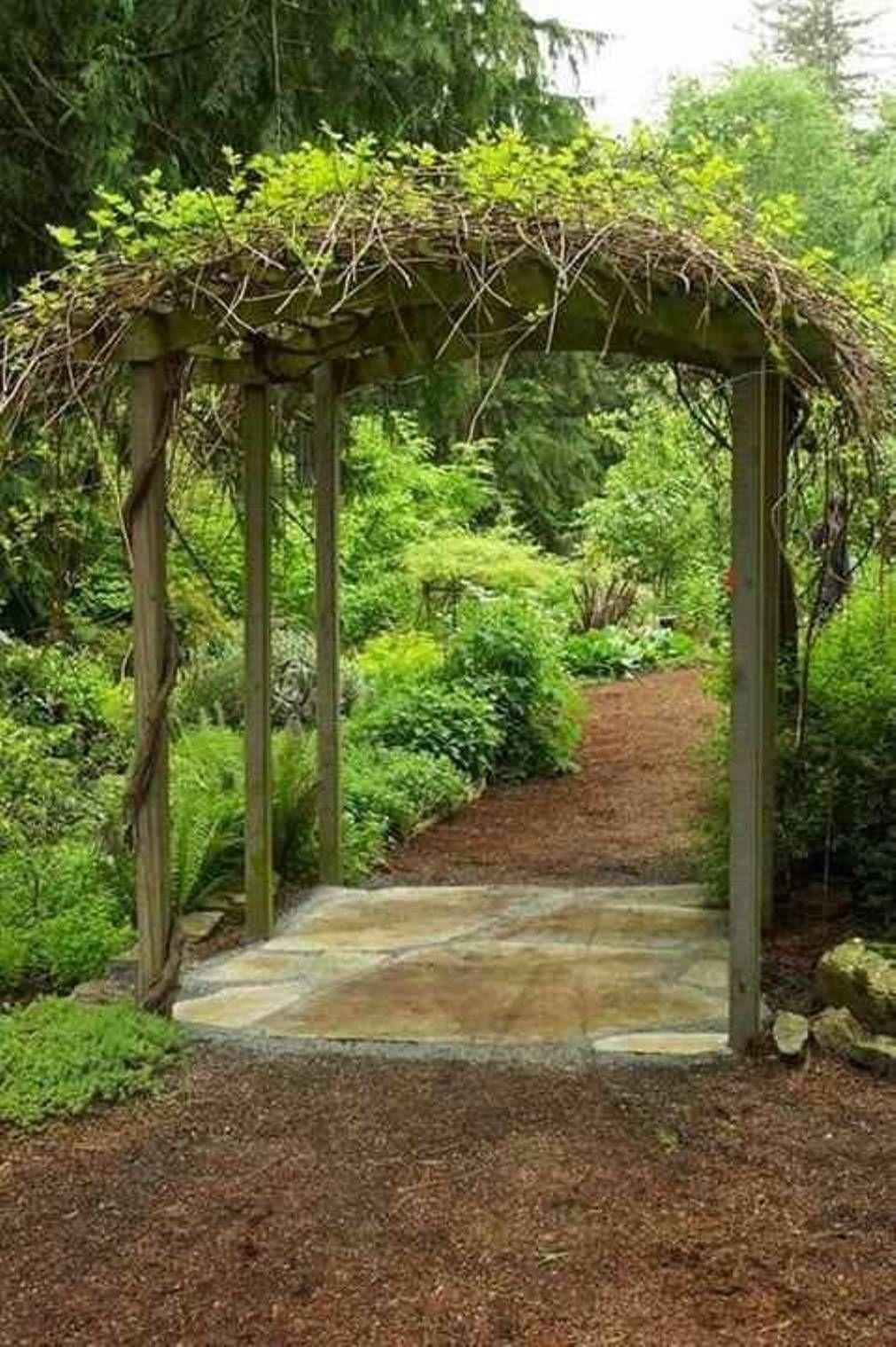 Garden And Lawn , Grape Arbor Design Ideas : Garden Grape Arbor ...