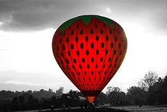 39th Irish Hot Air Balloon Championships