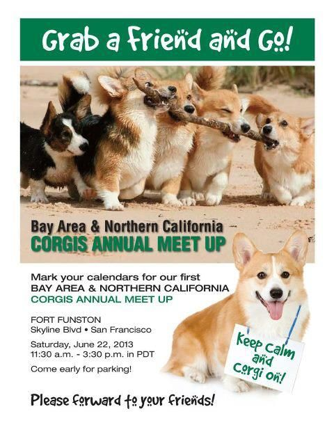 Bay Area & Northern California Meet Up on June 22nd