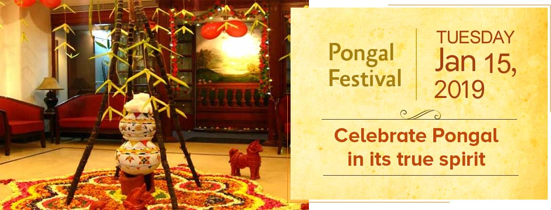 Pongal Festivals of india, Calendar date, Calendar