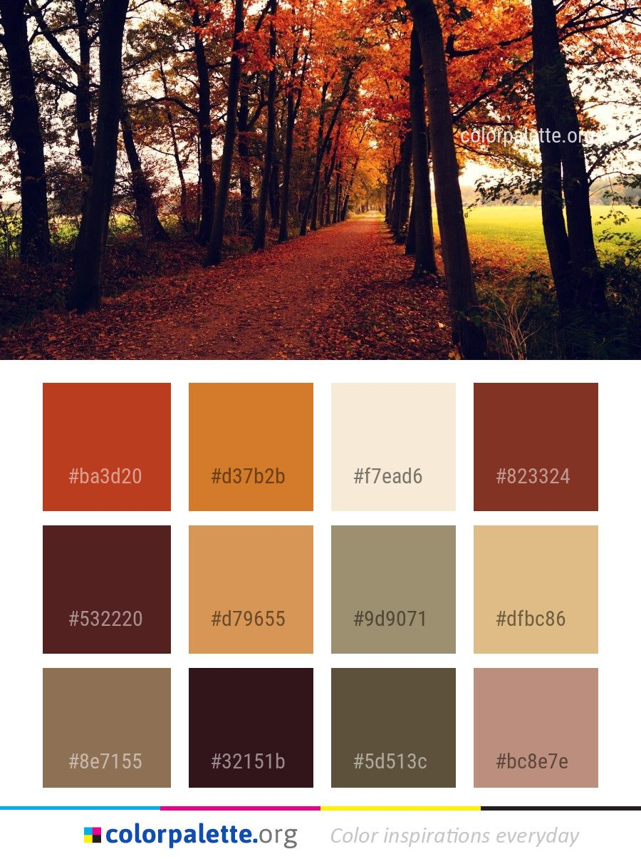 Nature Woodland Autumn Color Palette Colors Inspiration Graphics Design Inspiration Beautif Nature Color Palette Fall Color Palette Rustic Color Palettes