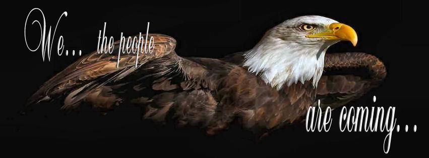 America Is Waking Up And We Will Make A Strong Stand Eagle Wallpaper Bald Eagle Eagle Painting