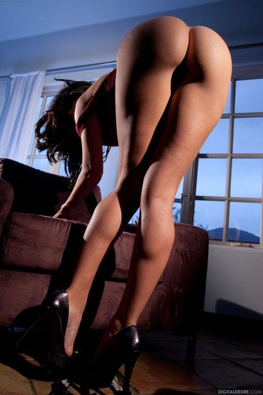 Lauren foxxx porn pics