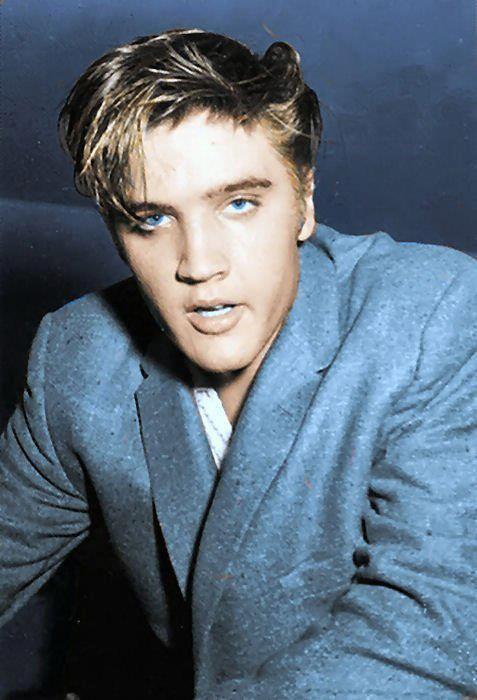 Elvis, natural sandy blonde with blue eyes. | elvis ...  Elvis, natural ...