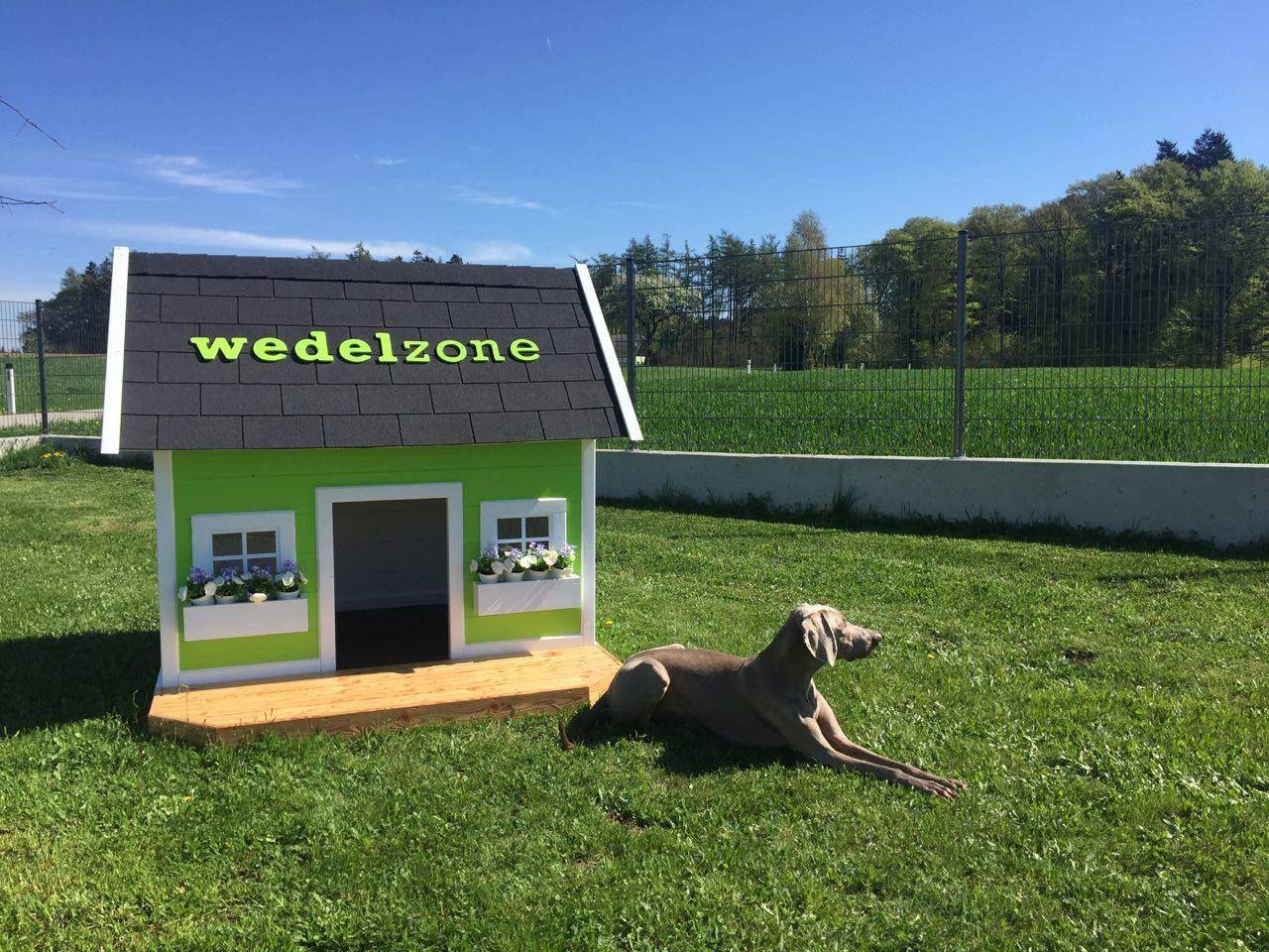 Luxus Hundehutte Modern Dog House Wedelzone Hunderesort