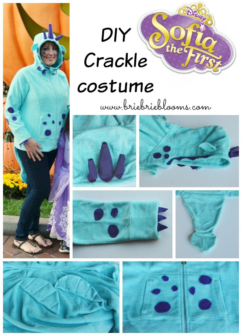diy sofia the first family costumes: crackle, sofia, and clover in
