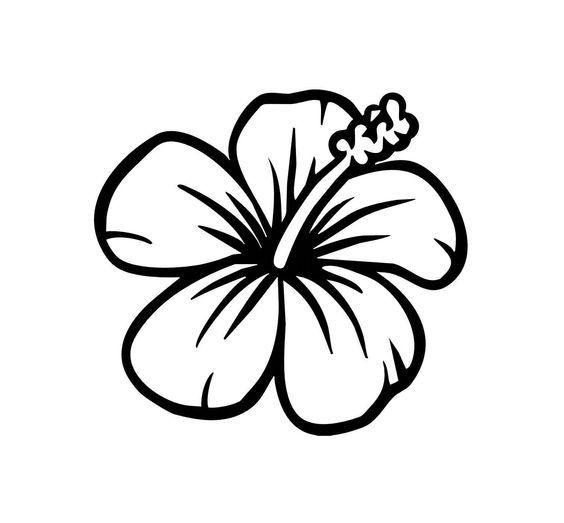 Simple Hibiscus Easy Flower Drawings Hawaiian Flower Drawing