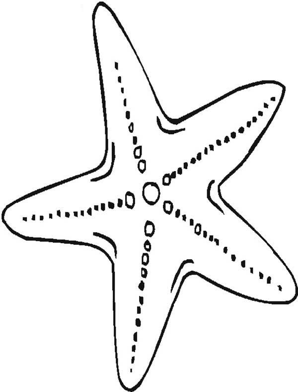 Mother Starfish Coloring Page Kids Play Color Fish Coloring Page Heart Coloring Pages Owl Coloring Pages