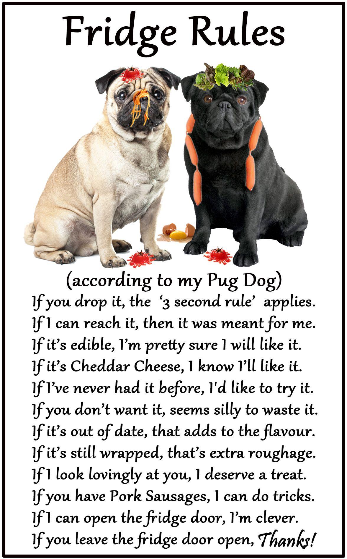 Pug Dog / Mopps Humorous Dog Fridge Rules. Size