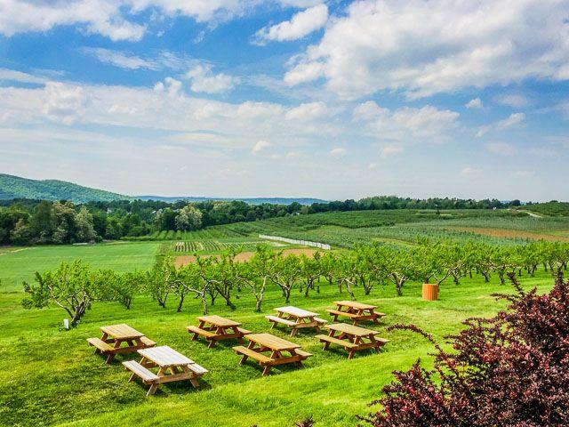 The Fishkill Farms Apple Orchard. Located in Fishkill, Dutchess ...