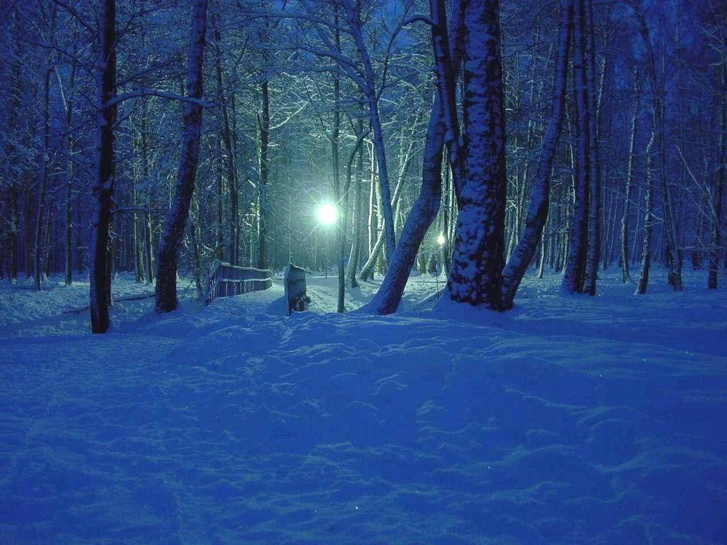 Dark Snowy Forest Dark Blue Bridge Forest Night Snow Winter Night Landscape Winter Forest Dark Forest