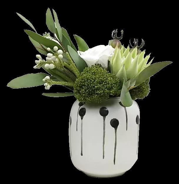 200 Best Succuluent Arrangements Images In 2020 Succulents Arrangement Planting Succulents