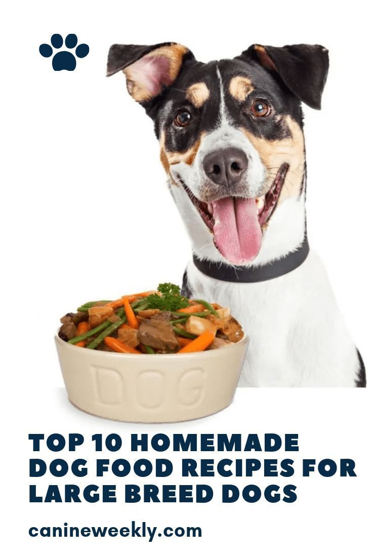 10 Best Homemade Dog Food Recipes For Large Dogs Dog Food Recipes Homemade Dog Food Best Dog Food