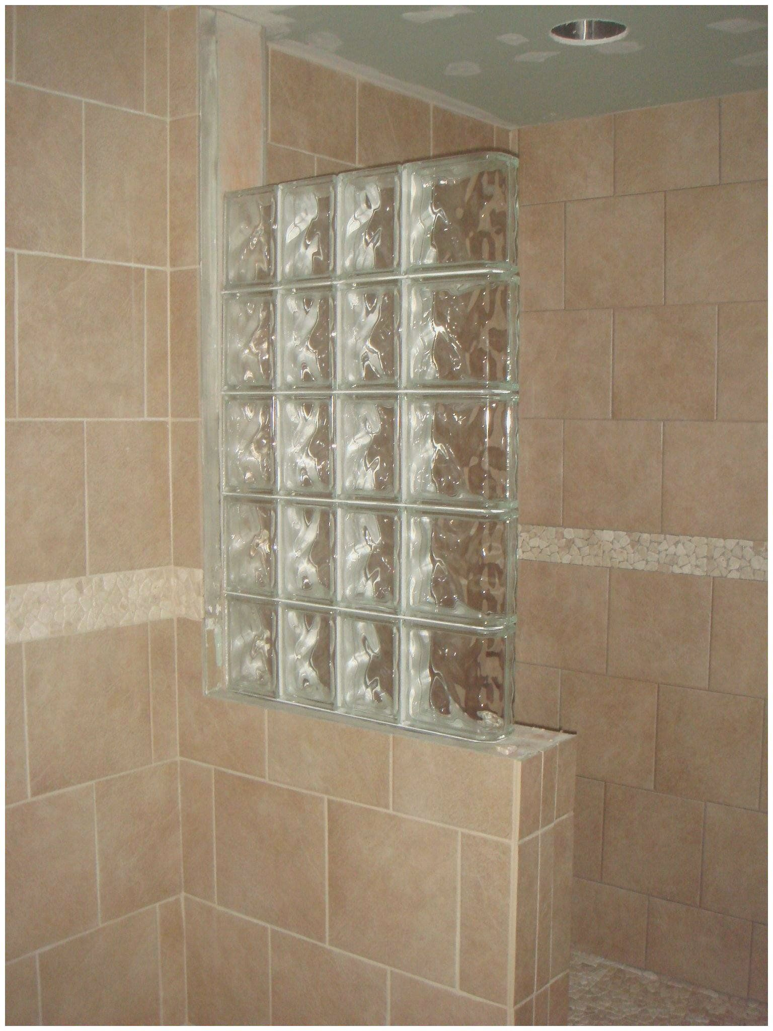 Small Bathroom Designs With Corner Shower In 2020 Glass Block