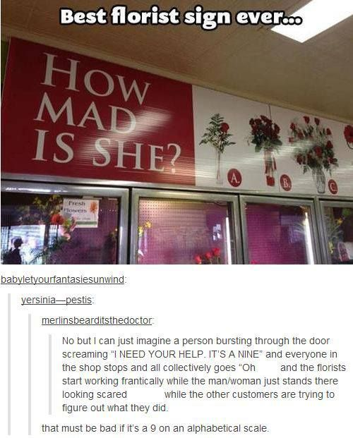 Pin By Joscelyn On Things That Make Me Laugh Tumblr Funny Funny Tumblr Posts Hilarious