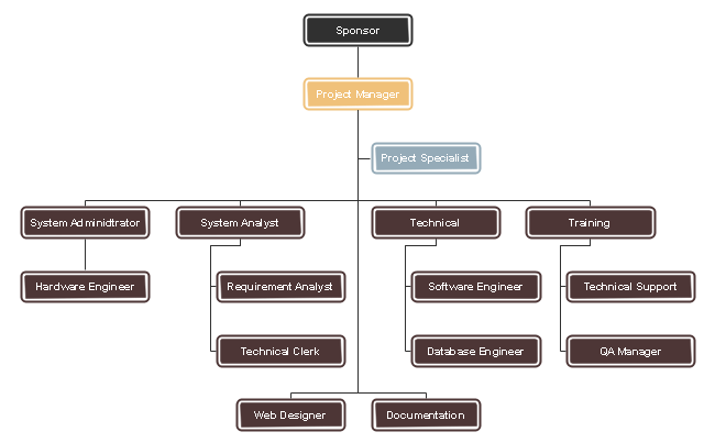 The functional project team organizational chart reveals the