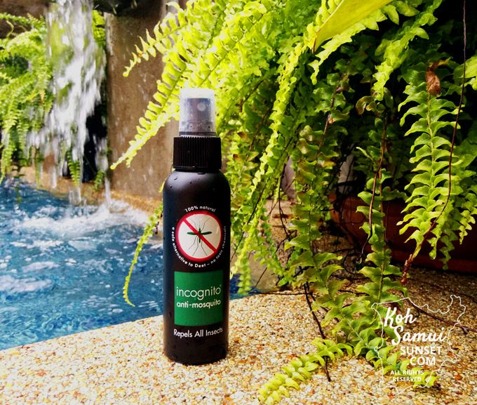 Incognito Mosquito Repellent The Best Natural Repellent Mosquito Best Mosquito Repellent Thailand Packing