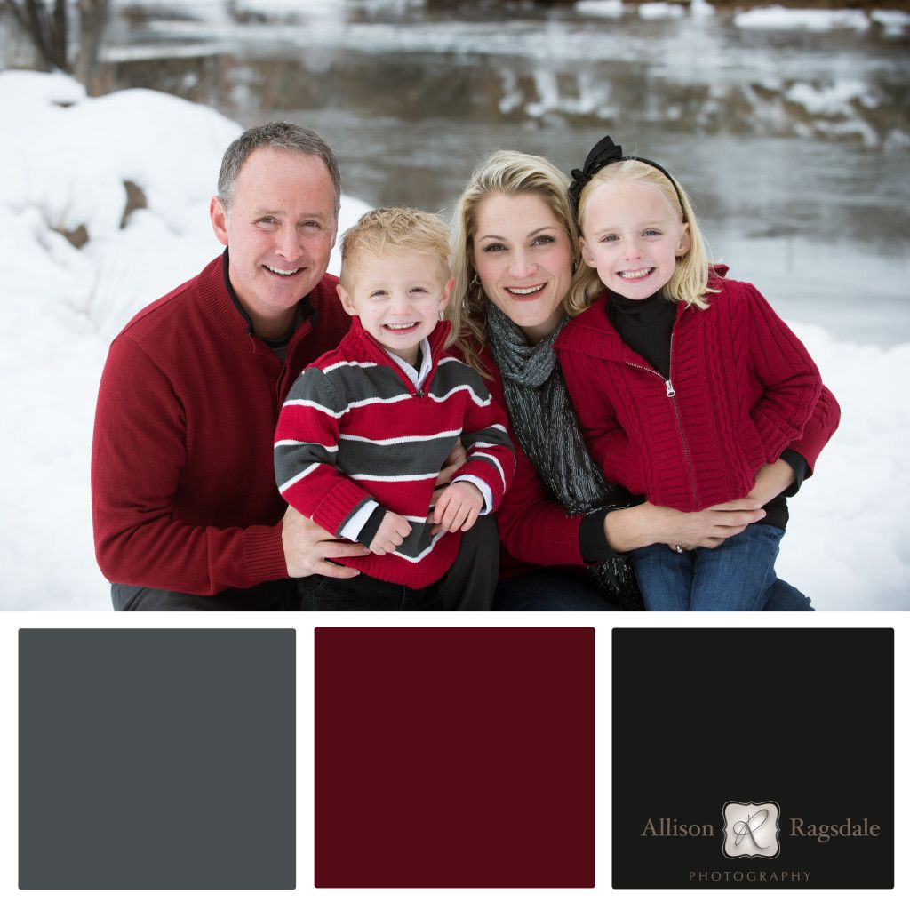 Family Portrait Color Palettes | Pinterest | Portraits and Interiors