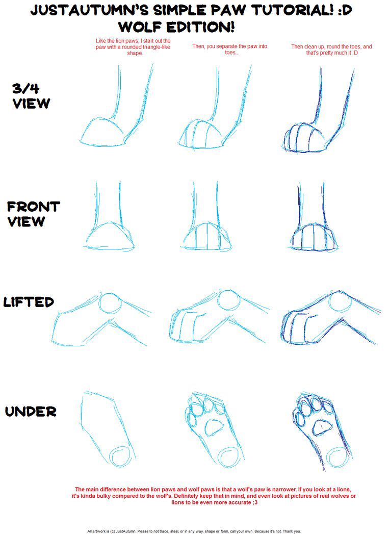 Drawing Wolf Paw Positions Paw Drawing Realistic Drawings Animal Drawings