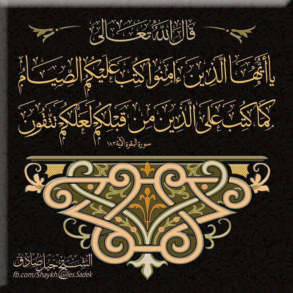 Desertrose Calligraphy Art Aayat Bayinat Fb Com Shaykh Gilles Sadek Whatsapp 12048003381 W Islamic Calligraphy Islamic Art Calligraphy Islamic Art