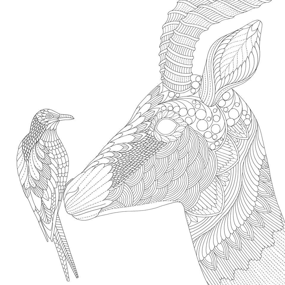 Hert Met Vogel Kleurplaten Kleurboek Kleuren