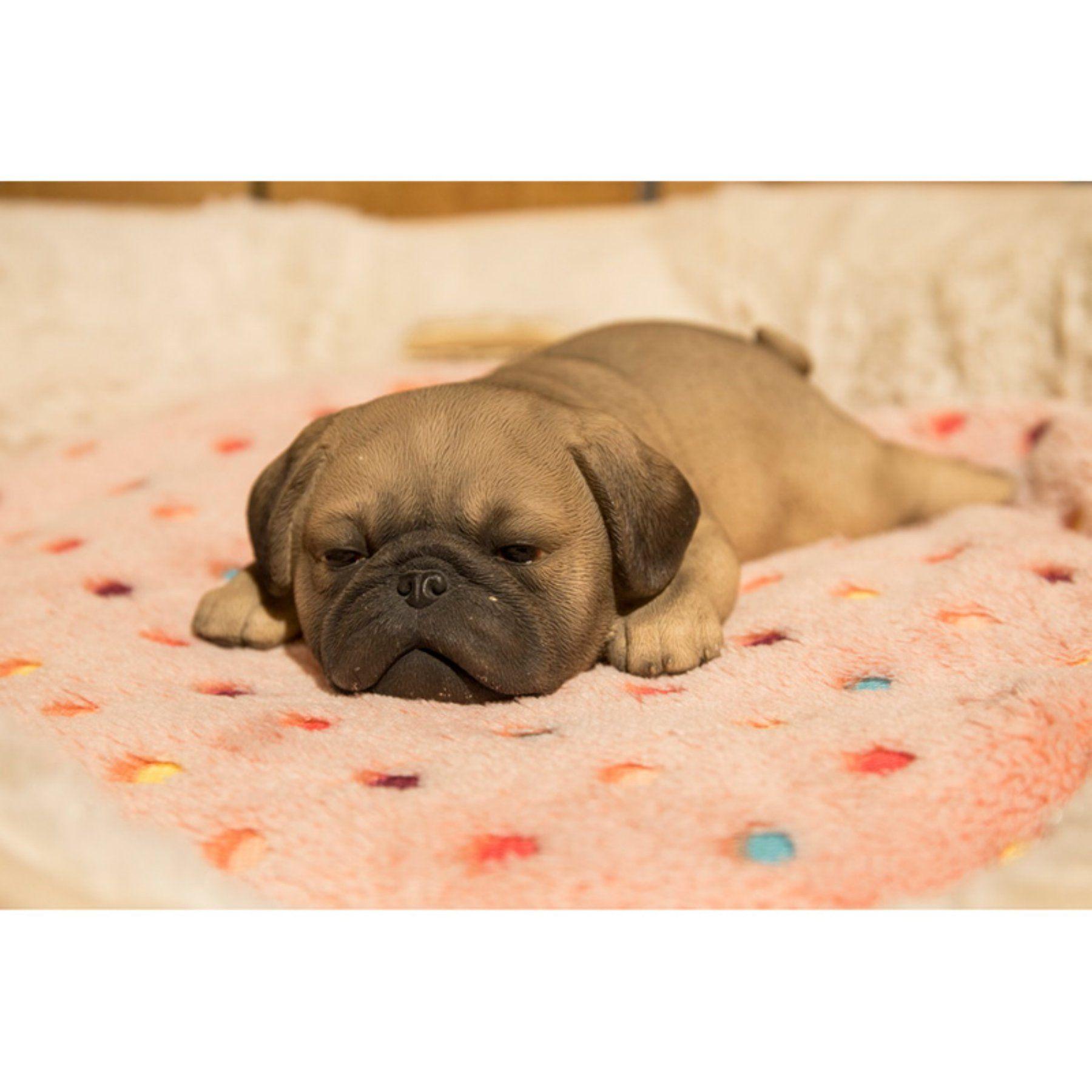 Hi Line Gift Ltd Pug Puppy Sleeping Sleeping Puppies Puppies Pugs