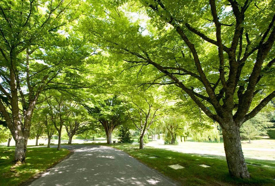 Royal Oak Burial Park in Victoria, British Columbia