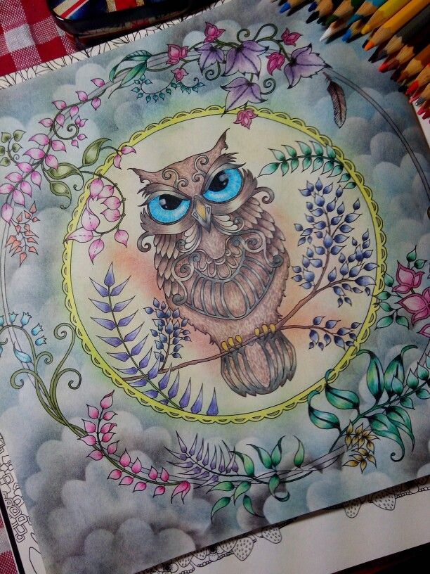 Owl Enchanted Forest Enchanted Forest Coloring Enchanted Forest Coloring Book Johanna Basford Enchanted Forest
