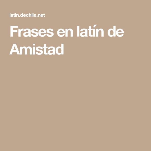 Frases En Latín De Amistad Frases Y Citas En Latín