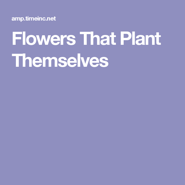 Flowers That Plant Themselves
