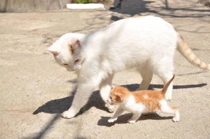 Mom& baby :)
