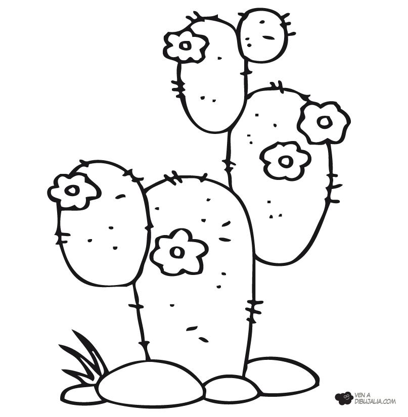 Resultado De Imagen Para Dibujos Para Pintar Macetas Patrones De Bordado Patrones Artesania De Cactus