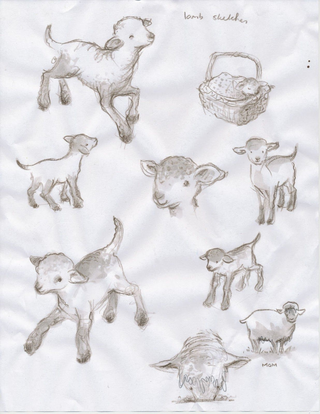 Baby Lamb Drawing Lamb Sketches Images Paperwork February 2012 Tattoo