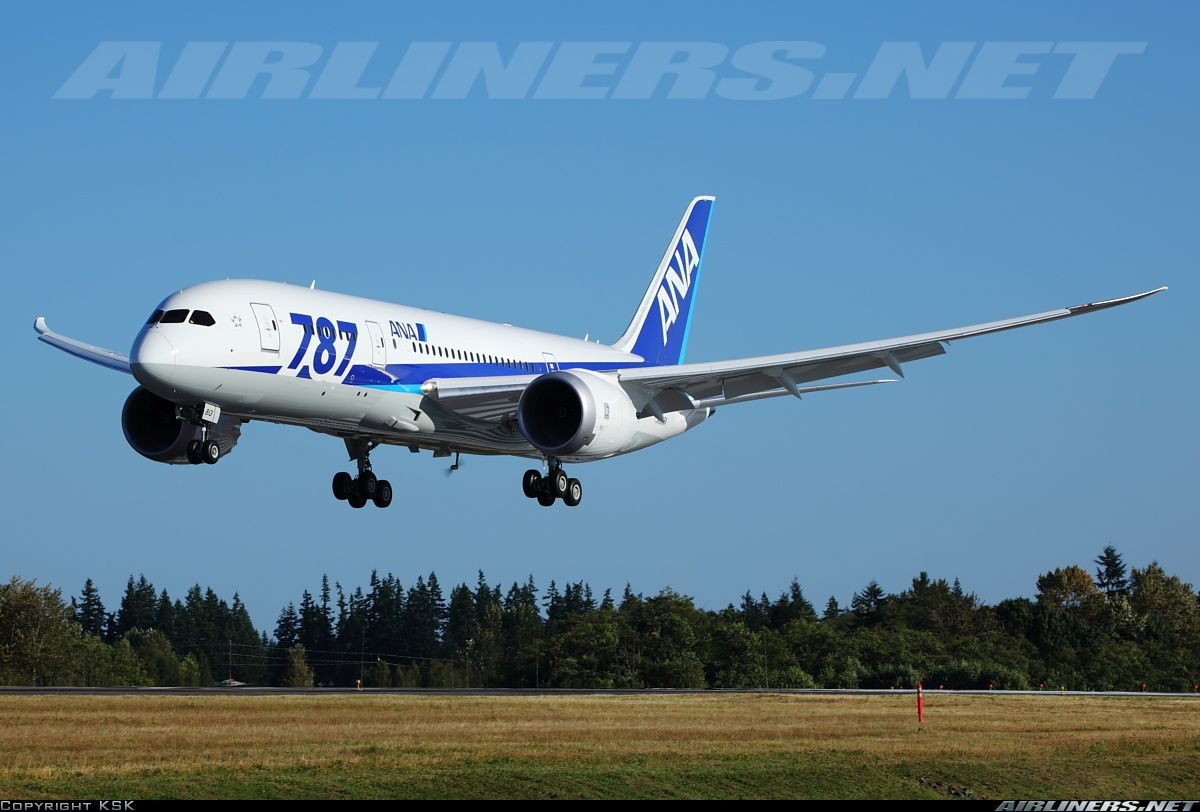 All Nippon Airways JA813A Boeing 787-881 Dreamliner aircraft picture