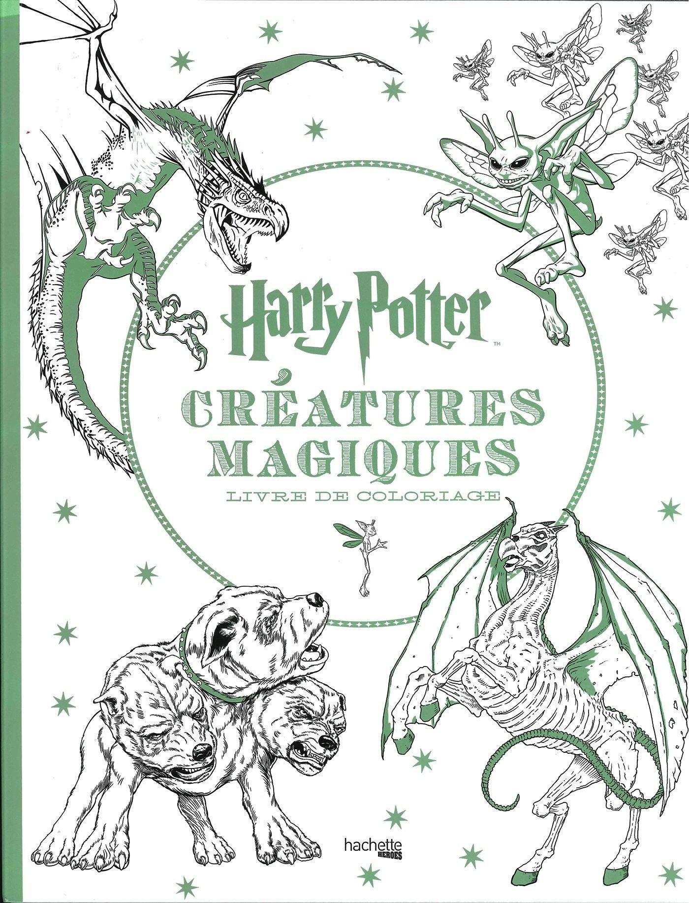 Harry Potter Creatures Magiques Coloriage Boor