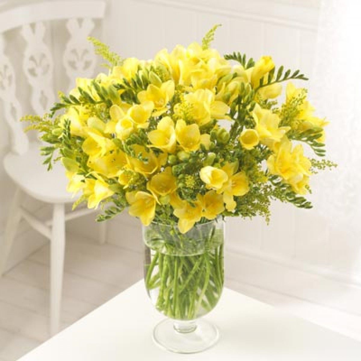 Sendabunch By Guernsey Flowers Limited 20 Yellow Guernsey Freesias Freesia Bouquet Freesia Flowers