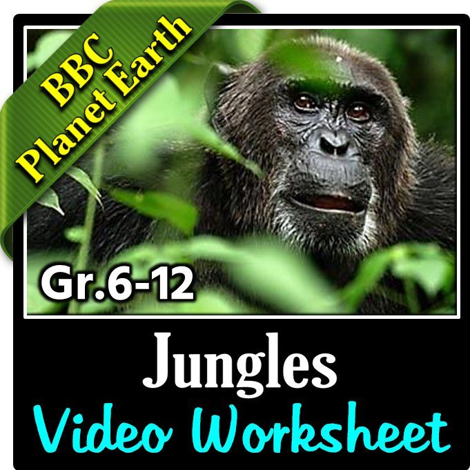 planet earth jungles video questions worksheet editable selvas. Black Bedroom Furniture Sets. Home Design Ideas